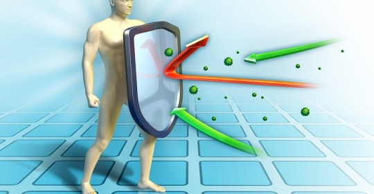Keep Your Immune System Fighting…